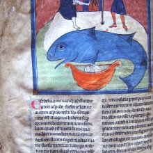Whale from 13th century French bestiary